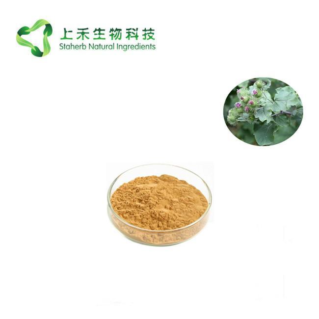 Great Burdock Achene Extract 2