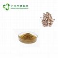 Gordon Euryale Seed Extract 2