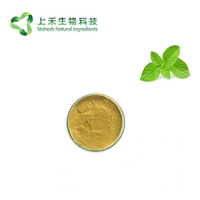 Gynostemma Pentaphyllum Extract 98% Gypenosides
