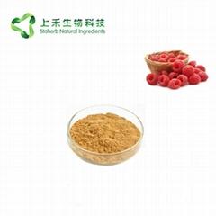 raspberry extract powder raspberry ketone