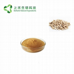 indigowoad root extract Radix isatidis Extract powder