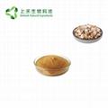 indigowoad root extract Radix isatidis Extract powder 3