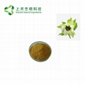 snow lotus extract