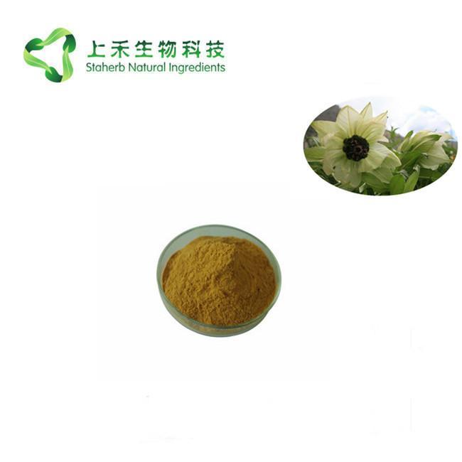 snow lotus extract 3