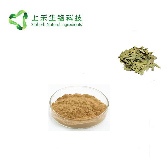 senna leaf extract 2
