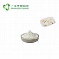 chinese Wild Yam Extract Powder 2