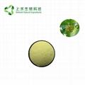 Camptotheca Seed Extract Hydroxycamptothecin