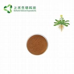 folium isatidis extract