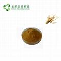 Siberian Ginseng Extract Eleutheroside