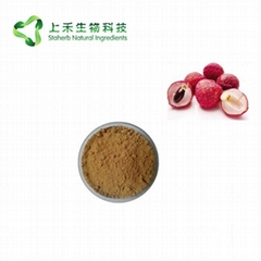 lychee seed extract powd