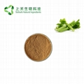Celery seed extract powder