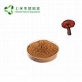 Lucid Ganoderma Extract polysaccharides 2