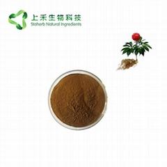 sanchi extract powder radix Notoginseng extract