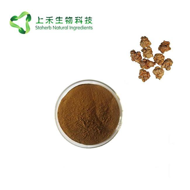 sanchi extract powder radix Notoginseng extract 2