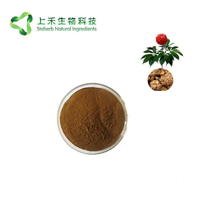 sanchi extract powder radix Notoginseng extract 3
