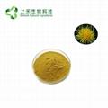 safflower extract