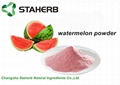 watermelon fruit powder