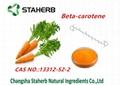 Carrot Extract Beta carotene