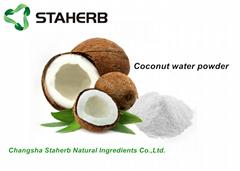Coconut fruit powder
