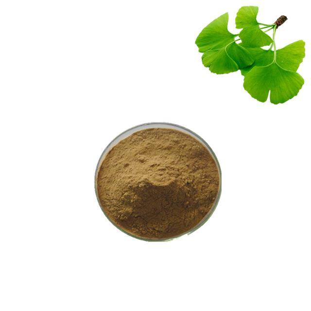 ginkgo biloba extract supplier 1