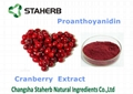 cranberry extract Proanthocyanidins