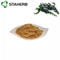 Rosemary extract carnosic acid 20%