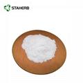 Loquat Leaf Extract 98% Maslinic acid