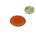 Macleaya cordate extract Sanguinarine
