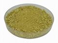 西蘭花提取物蘿蔔硫甙