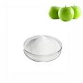 apple extract phlorizin