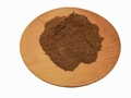 horsetail extract silica 7%