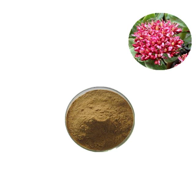 Rhodiola rosea extract salidroside 1