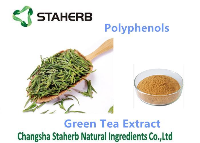 green tea extract polypenols 1