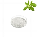 Natural sweetener stevia leaf extract