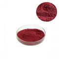 Red Yeast Rice Extract Powder