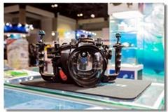 2020上海國際水上運動及潛水裝備展覽會