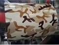 Camouflage Pattern PPGI Printed Steel Coil 2
