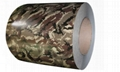 Camouflage Pattern PPGI Printed Steel Coil 5