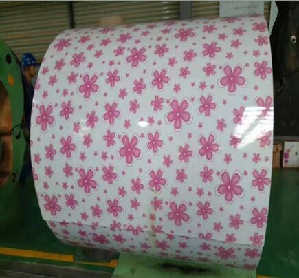 Flower  Pattern Steel coil Design PPGi 4