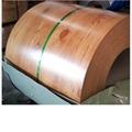 Color Coated Aluminium Coil PPAL 2