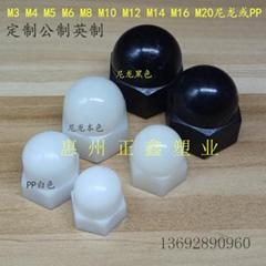 M3-M20尼龙/PP本色黑色尼龙盖形螺母可定制