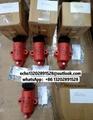 SG170030 AGCO ignition coil, genuine