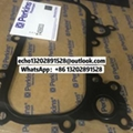 Perkins oil cooler gasket