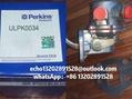 130506300 130506351原厂Perkins珀帕金斯403 404发动机电子泵手油泵JCB