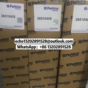 原裝正品Perkins珀金斯帕金斯手搖泵4000發電機配件 1