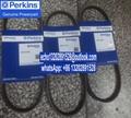 541/398 原裝正品perkins珀金斯發動機風扇皮帶充電機皮帶T80109105 4