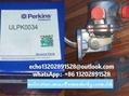 KRP1721珀金斯perki