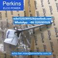 原厂Perkins珀帕金斯4006TWG/4008TAG发动机水泵 SE145AX SEV145BK T431180