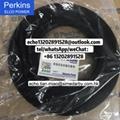 2645A753R Perkins injectior for 1106D Wirtger Paver Caterpillar C6.6