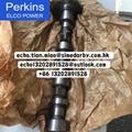 原裝正品perkins帕金斯珀金斯凸輪軸1106卡特C7.1 T406607/T412036  1